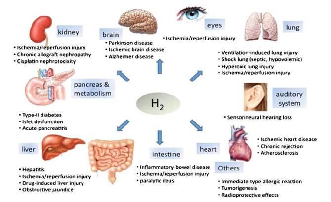 Molekuláris hidrogén hatásai